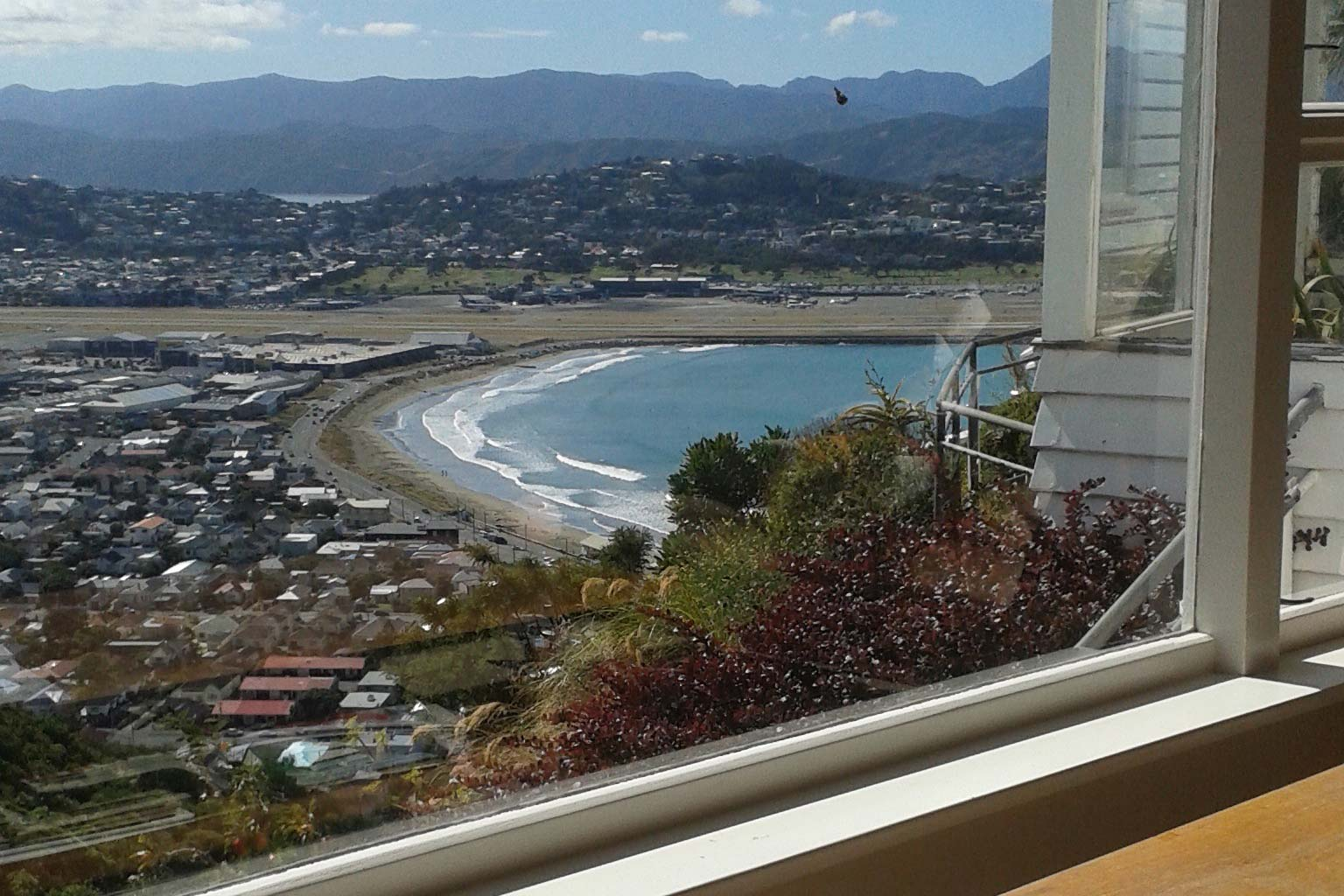 my adventures house sitting in wellington new zealand