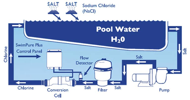 Diagram showing a salt water swimming pool setup
