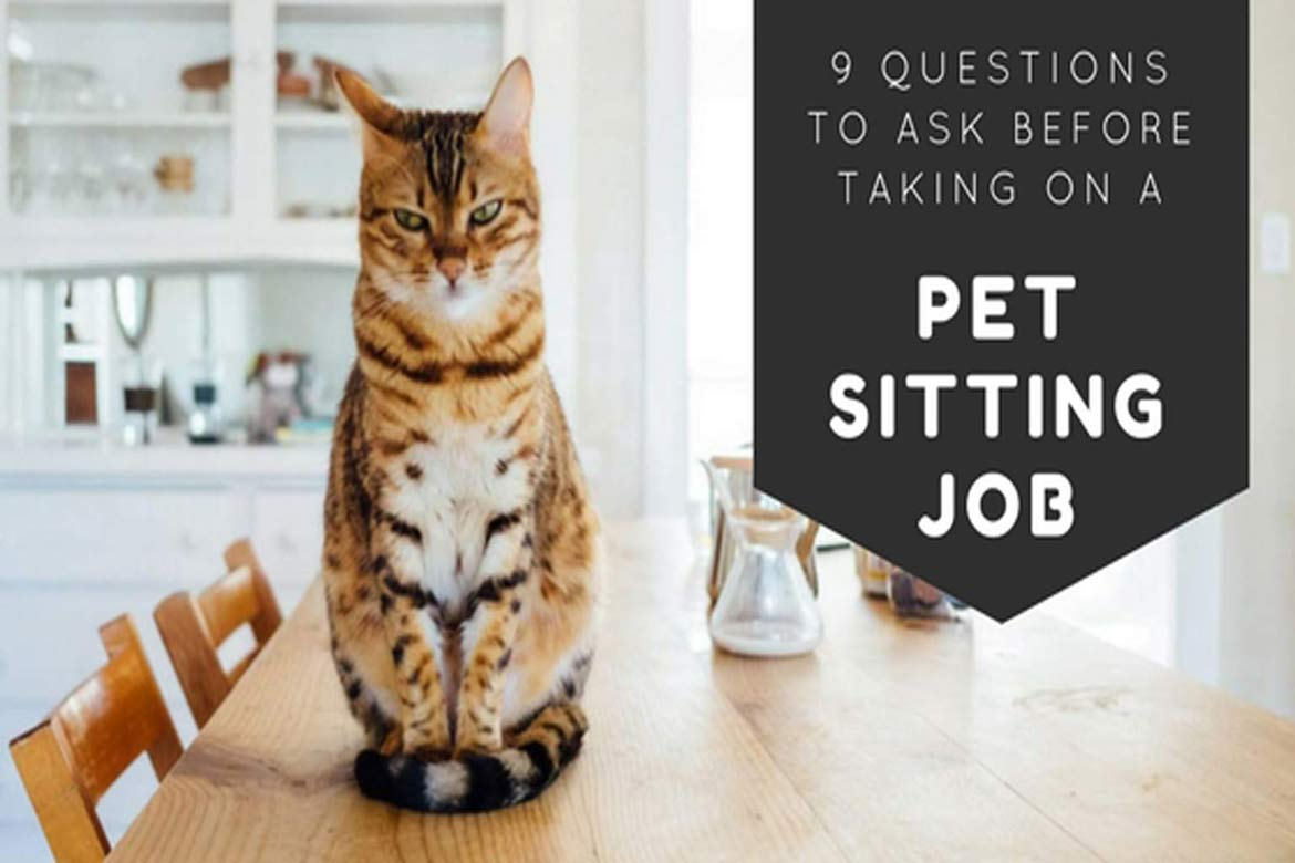 questions-to-ask-pet-owners-before-accepting-pet-sitting-jobs