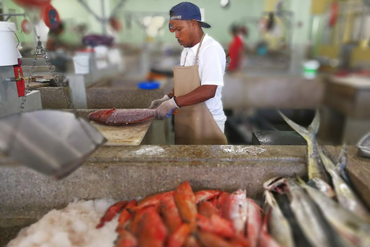 Kingstown Fish Market, St Vincent