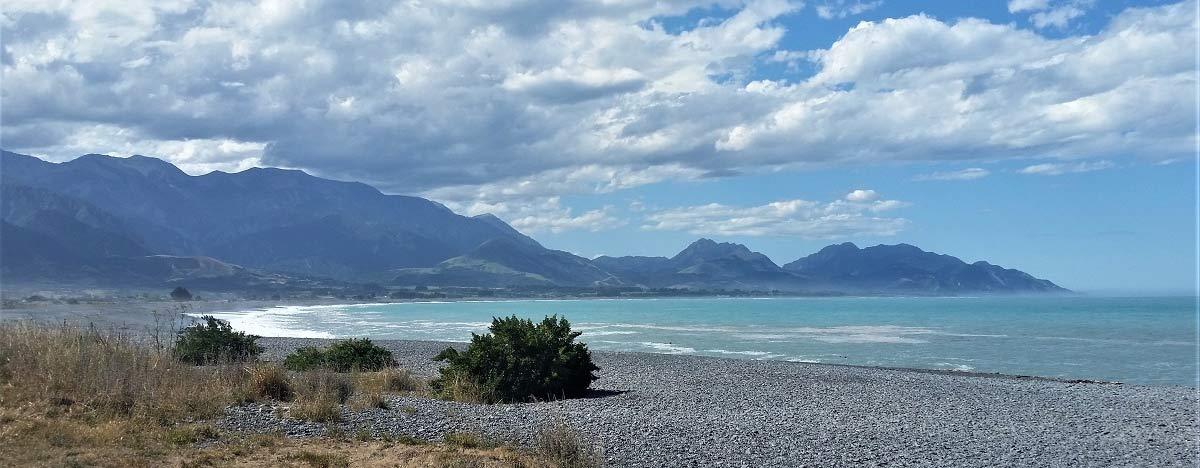 Kaikoura Bay views