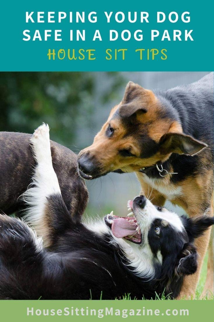 Dog Park Rules & Etiquette #dogparks #dogparksafety #dogparkrules #housesitters #petsitters